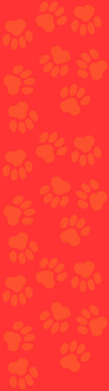 paws background