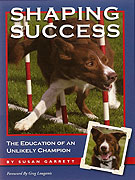 Bookcover: Shaping Success