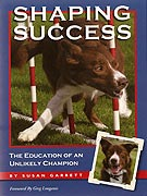 Book Cover: Shaping Success
